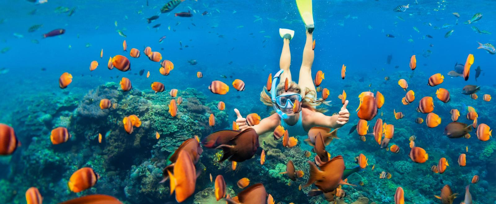 Projects Abroad traveller swims through the coral reefs of the Belize barrier Reef.